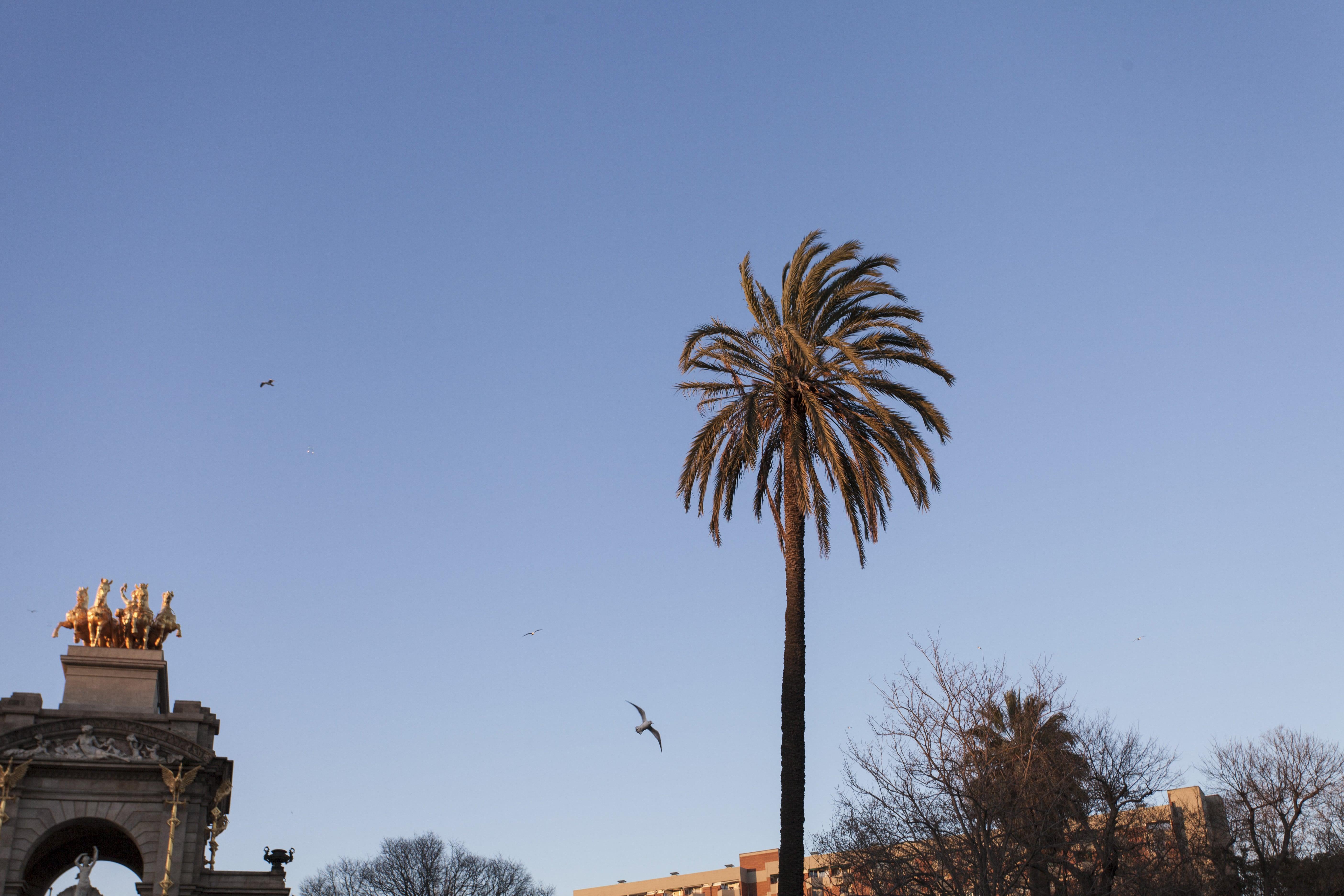 Barcelone City trip