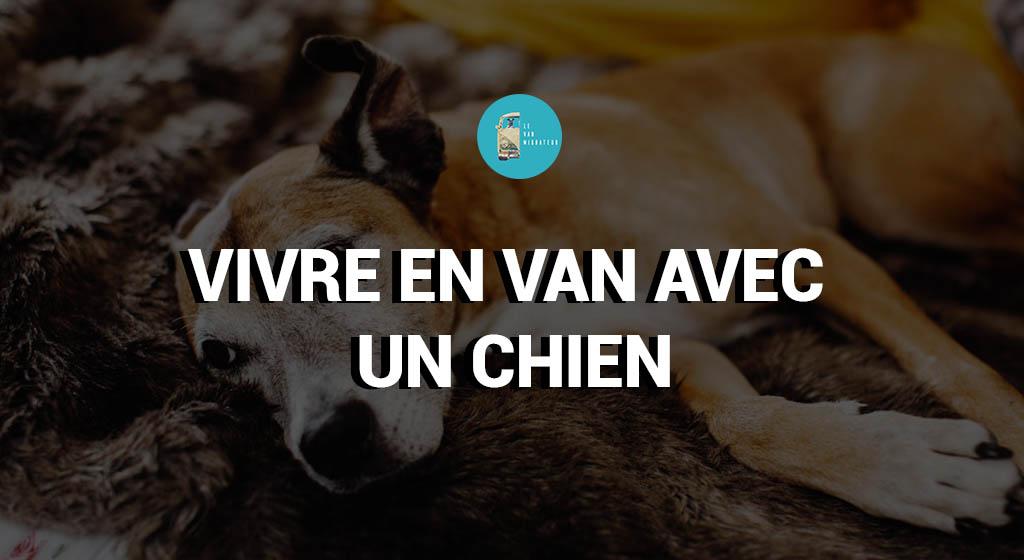 Vivre en van avec un chien